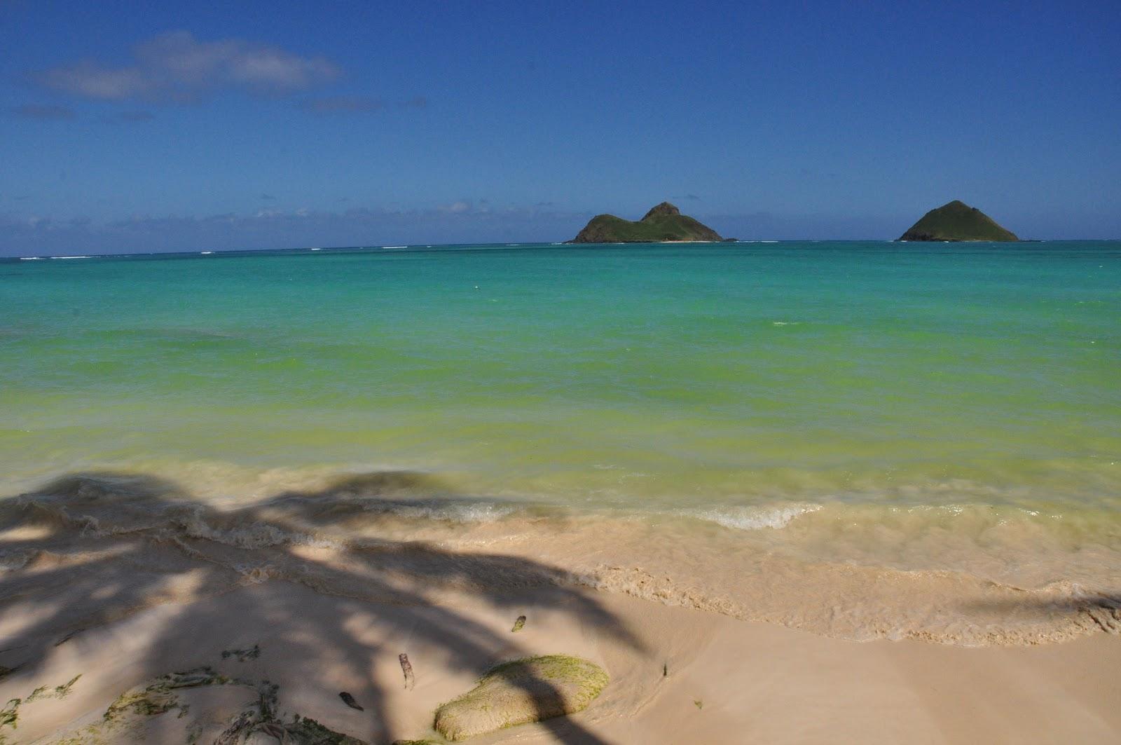 Na Mokulua Hawai: Wanderlust Of The Koguts: Hawaii Day 4