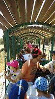 רכבת קטר בחצר הראשונים