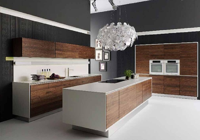 Contemporary Modern Kitchen Cabinet