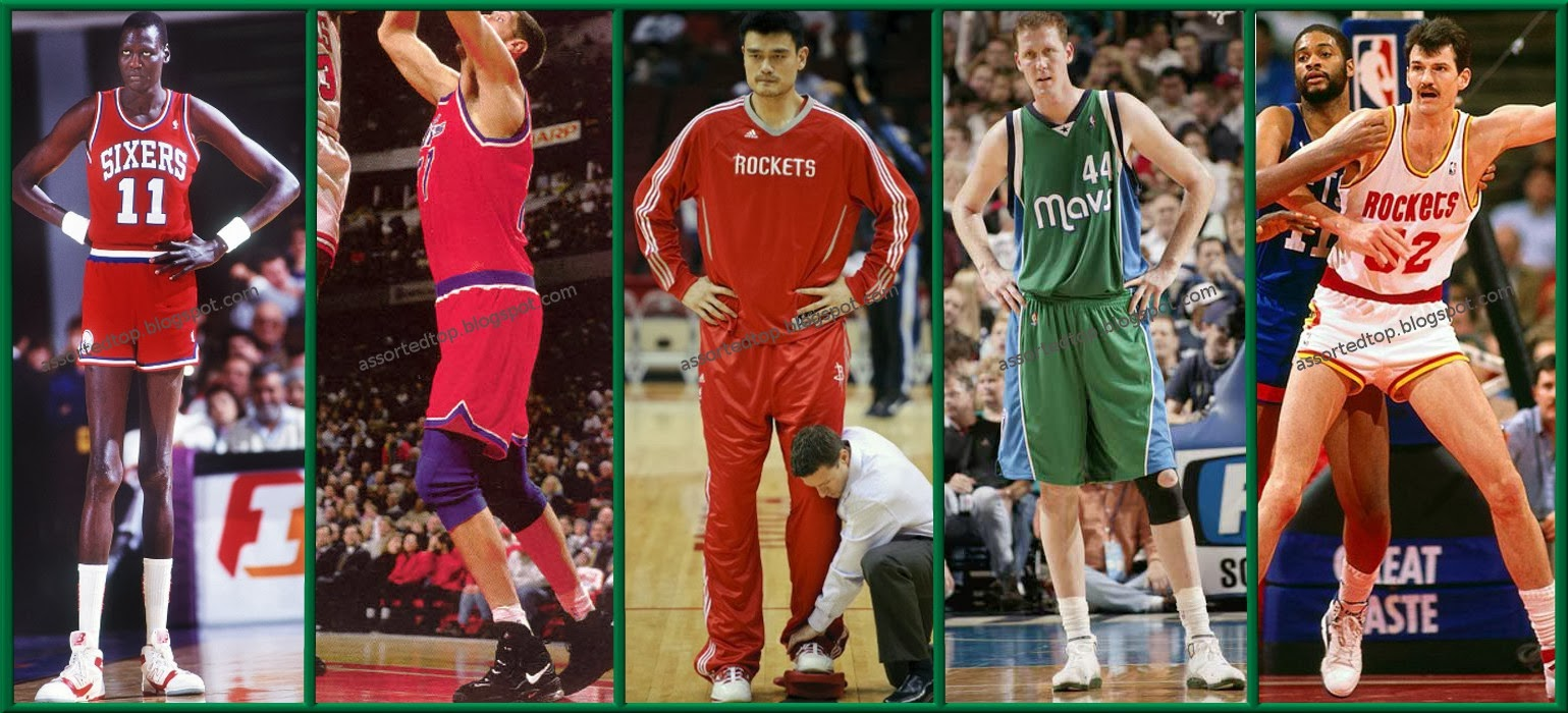 List of Top 5: Top 5 Tallest NBA Players