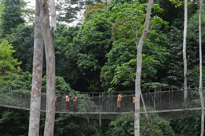 Canopy Walkway and The Cape Coast Castle