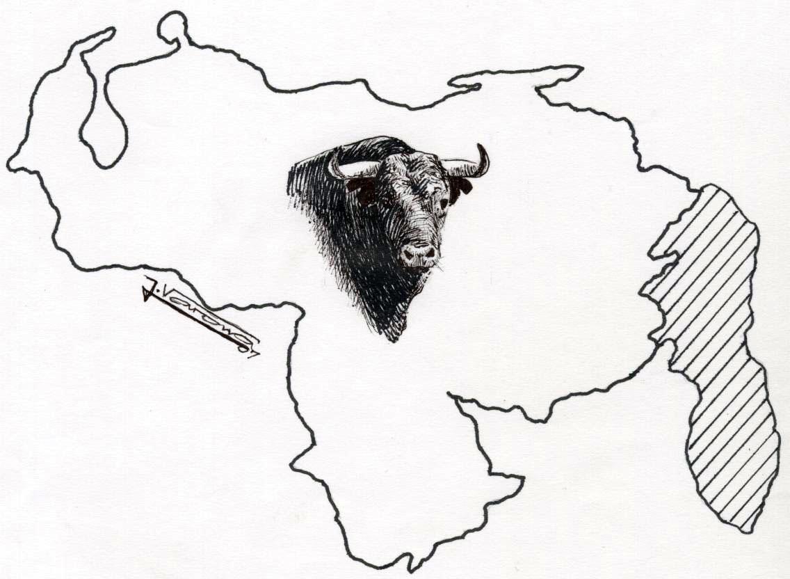 Todo Toros Venezuela En Manos De Toreros Venezolanos La