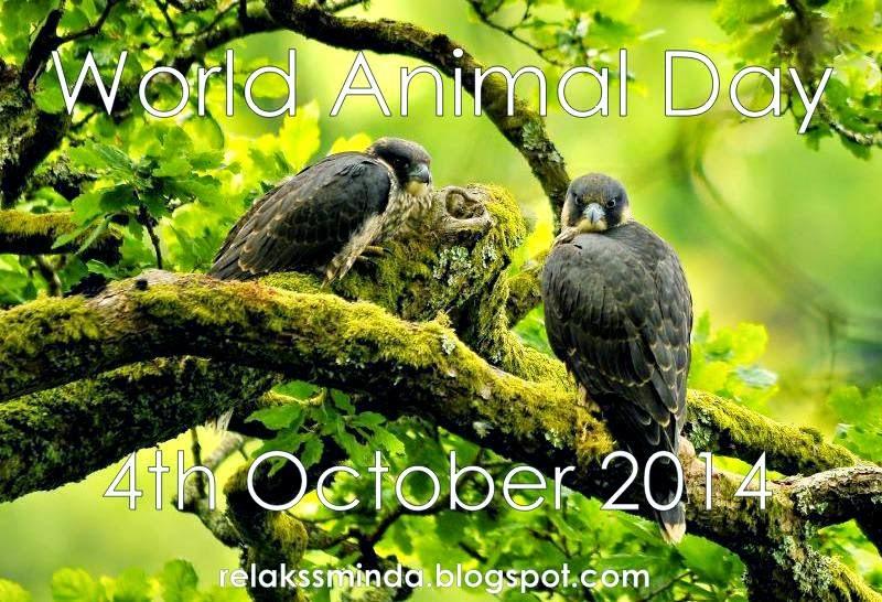 Hari Binatang Sedunia - World Animal Day