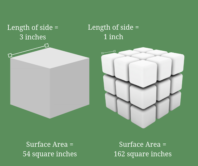 surface area diagram