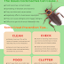 How To Do Pest Control To Get Rid Of Insects