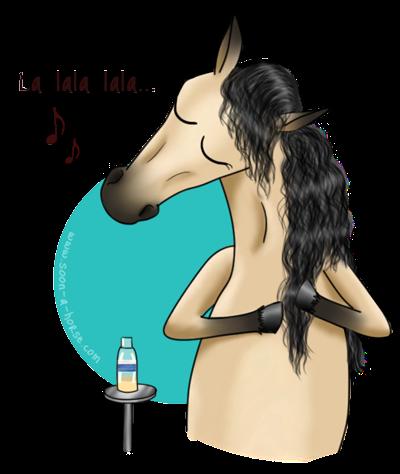 Cavasso, le bien-être pour les chevaux