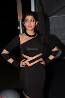 Pranitha Subhash in a skin tight backless brown gown at 64th Jio Filmfare Awards South ~  Exclusive 033.JPG