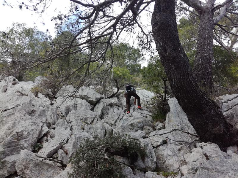 Alla conquista del Puig de n'Ali