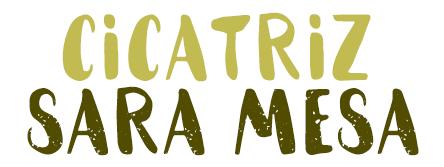 Cicatriz, Sara Mesa.