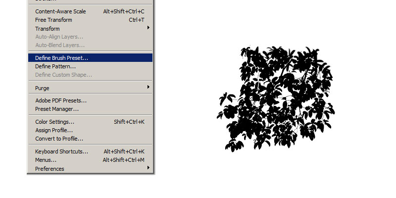 Creating Photoshop Tree Brush From Photo
