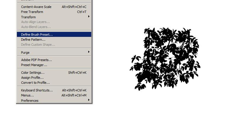Creating Photoshop Tree Brush From Photo