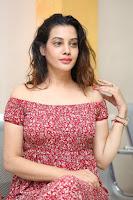 Diksha Panth in a Deep neck Short dress at Maya Mall pre release function ~ Celebrities Exclusive Galleries 105.JPG