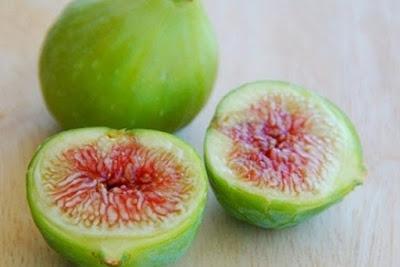 Thảo dược cây sung trị bệnh sỏi thận