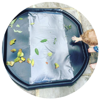 tack back plastic tuff tray with leaves and natural found resources stuck on
