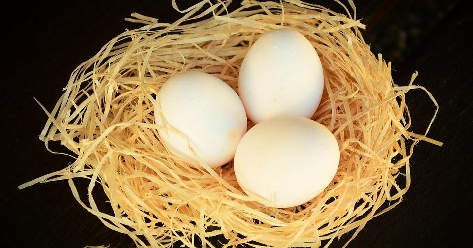 Cara Merampungkan Komedo Dengan Putih Telur. Begini Cara Yang Benar ... 37a36e6841
