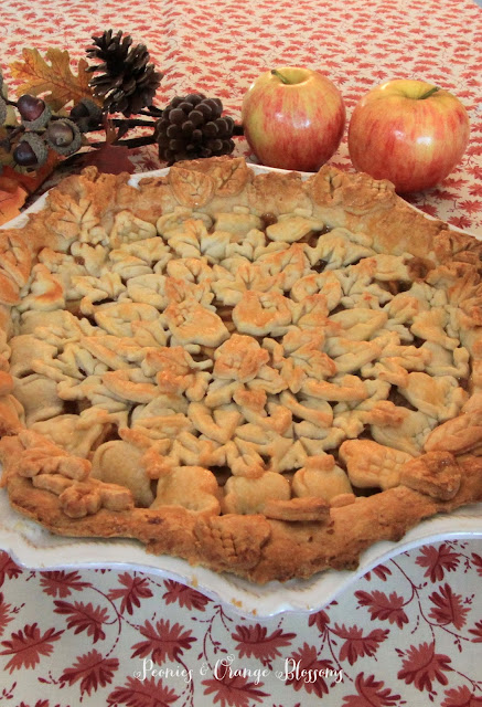 The best homemade apple pie recipe - the top crust was made with Fall cutouts!