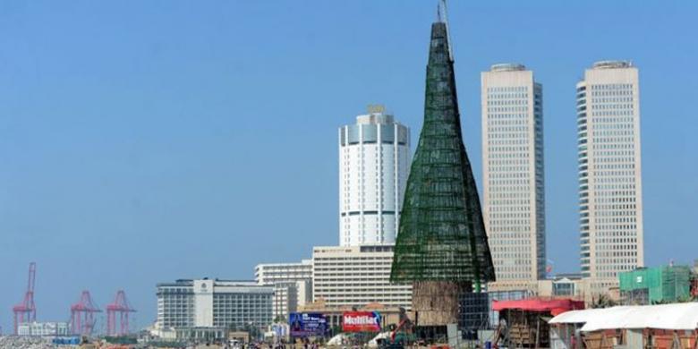 sring langka memiliki bentuk pohon natal tertinggi di dunia