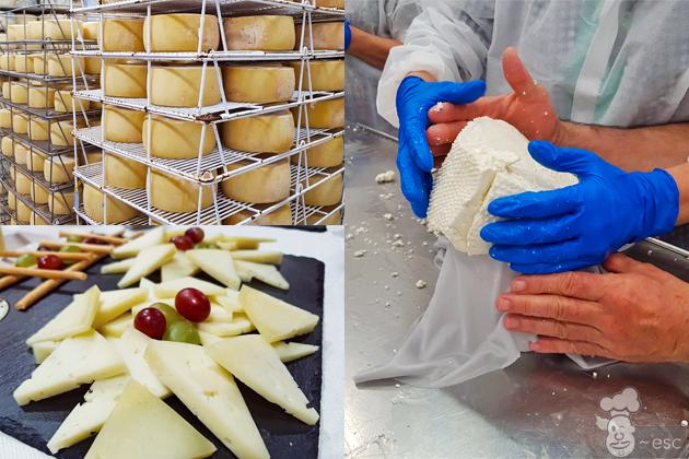 elaboracion del queso roncal paso a paso