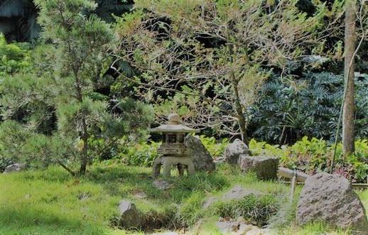 lanterna de pedra no jardim japonês
