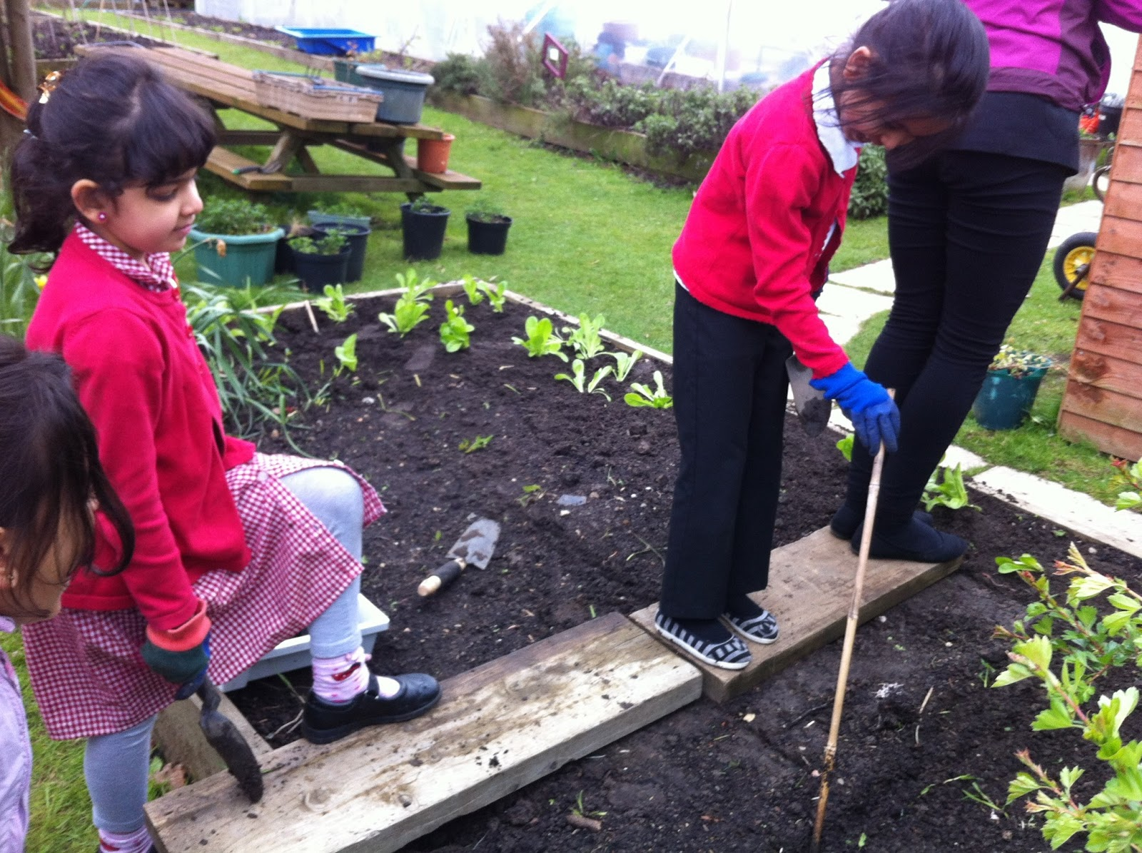 Welcome to Cookridge Primary School's Garden: Little Green