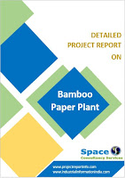 Bamboo Paper Plant Project Report