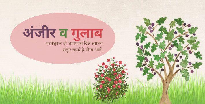 अंजीर व गुलाब - इसापनीती कथा | Anjir Va Gulab - Isapniti Katha