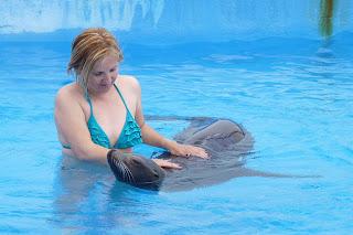 Yolanda estafa Una leona marina en Aquópolis.