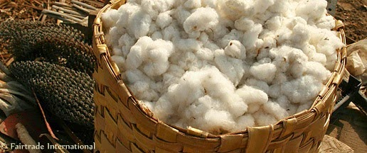 Fairtrade cotton. Photo courtesy of Fairtrade International.