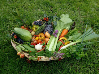 basket of organic vegetables on the grass Organic Centre Leitrim