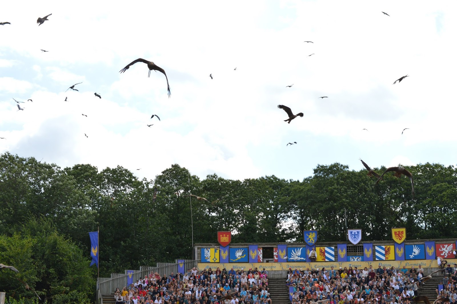 Puy du Fou Theme Park, France - birds of prey show