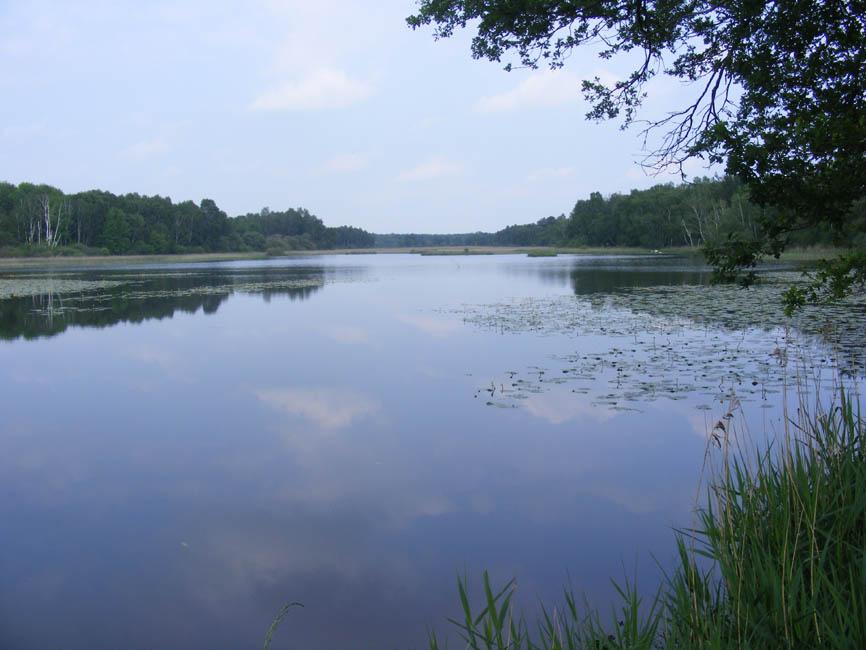 Land Of A Thousand Lakes