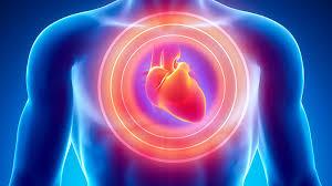 Risk of Cardiac Disease