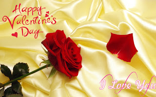 free download 2017 top best happy valentines day images hd dp wallpapers whatsapp fb facebook pictures photos quotes mgs for husband girlfriend lovers couples whatsapp facebook fb
