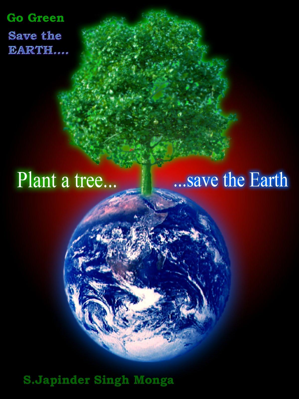 Save Trees Essay