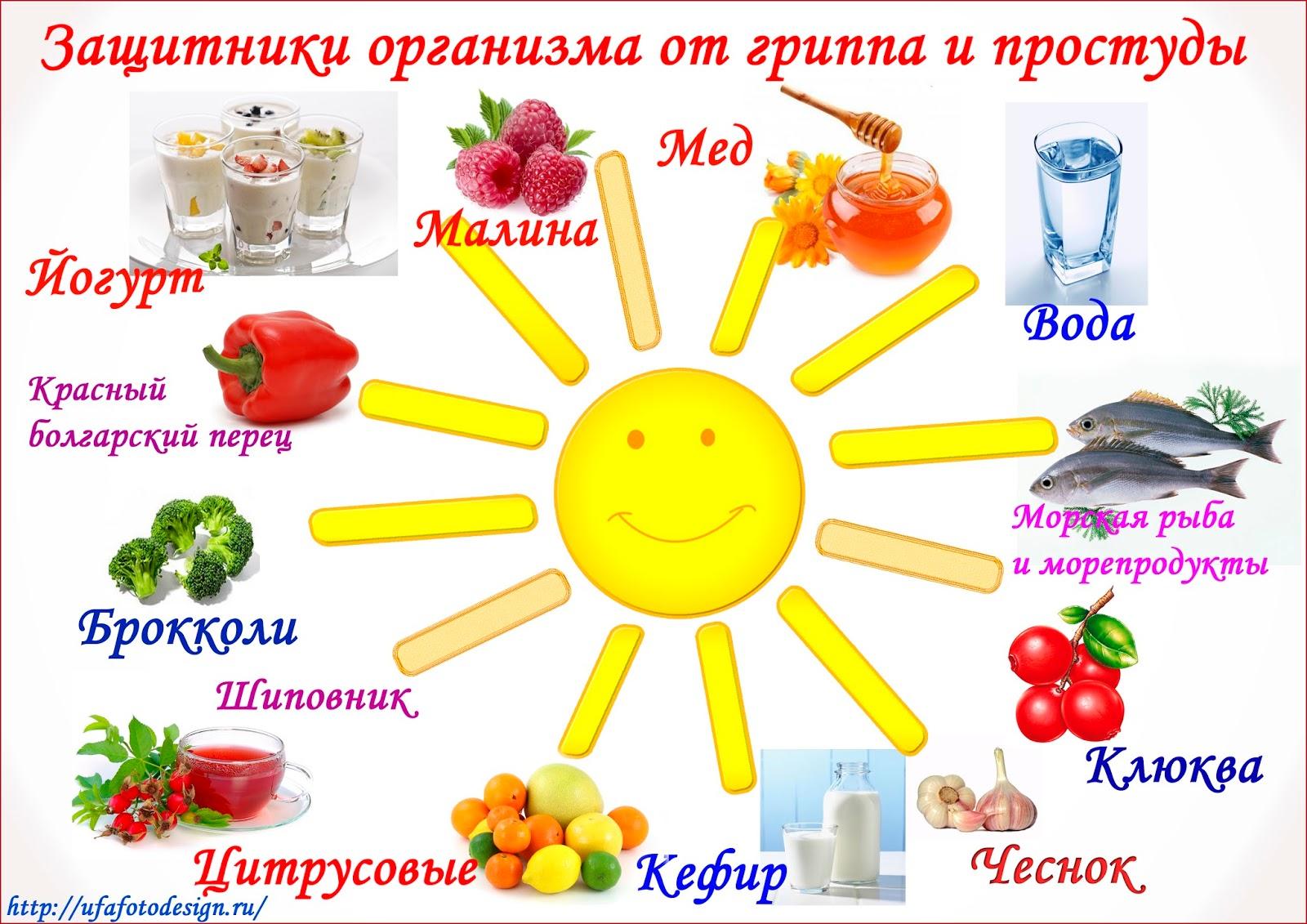 Характеристика и выращивание высокоурожайной вишни Малиновка