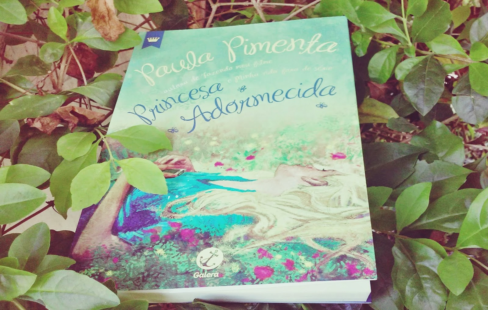 livro, Paula Pimenta, resenhas, Vanessa Vieira,