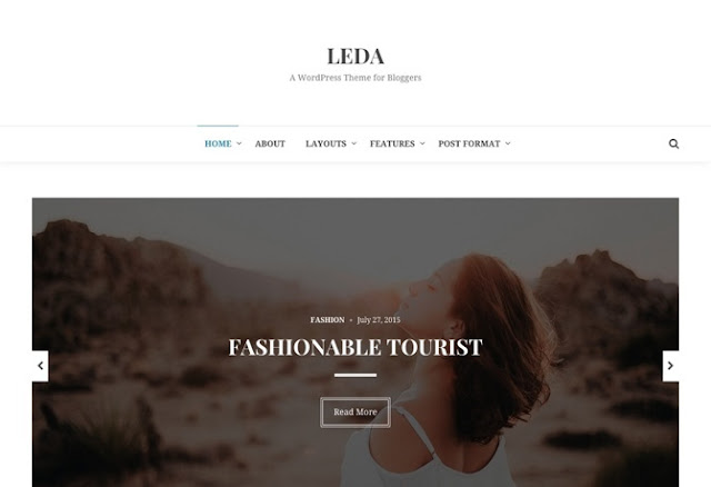 Leda Premium WordPress Theme