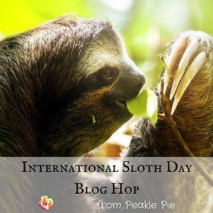 http://peaklepie.com/international-sloth-day/