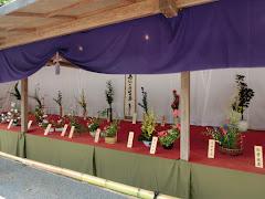 鶴岡八幡宮例大祭・献華会