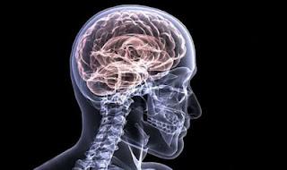 La Enfermedad de Alzheimer se ve diferente entre los Pacientes Hispanos