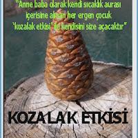 Kozalak Etkisi