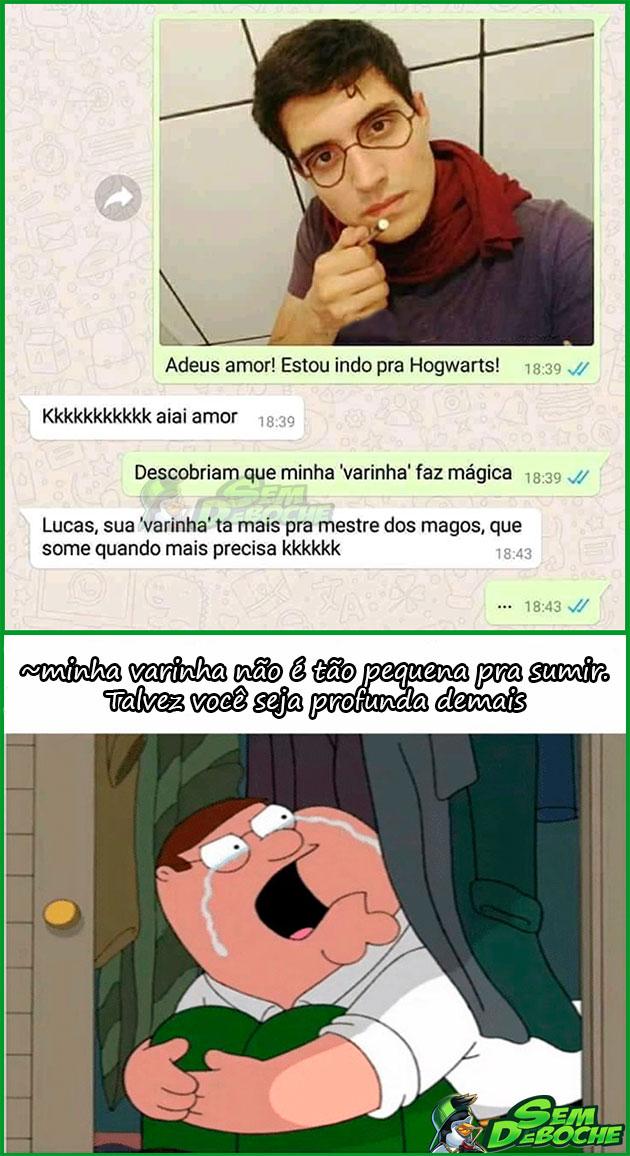 VARINHA MESTRE DOS MAGOS