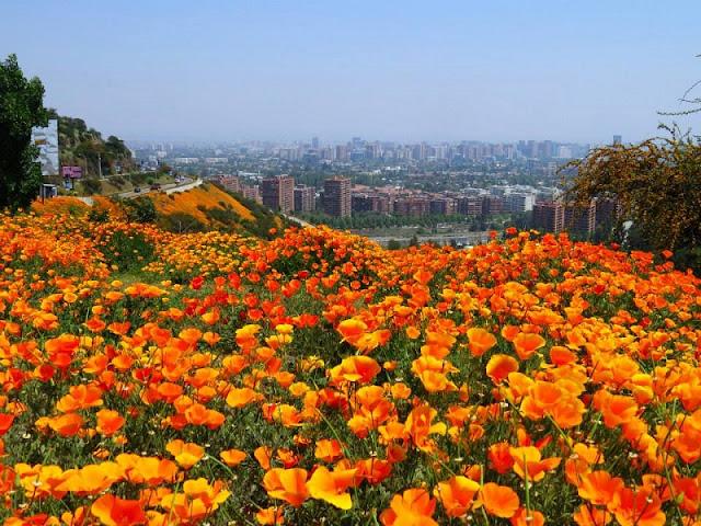 Santiago do Chile em outubro