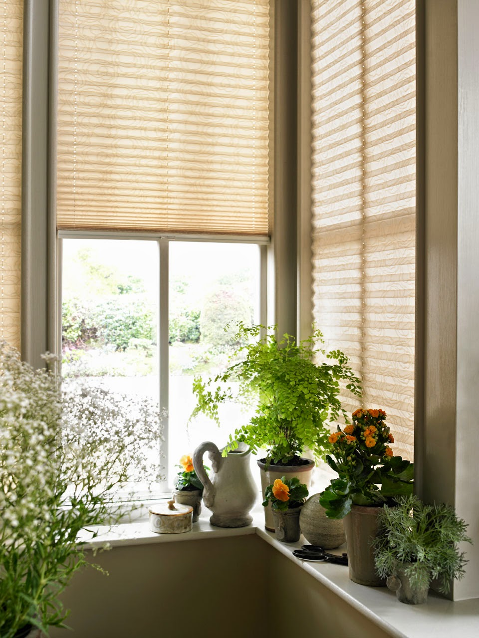 beautiful blinds