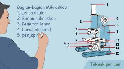 Pengertian Mikroskop dan Bagian-bagian Mikroskop Beserta Fungsinya