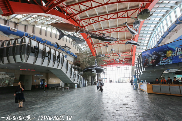 大廳挑高的設計,還有很多海鮮在空中自在悠游