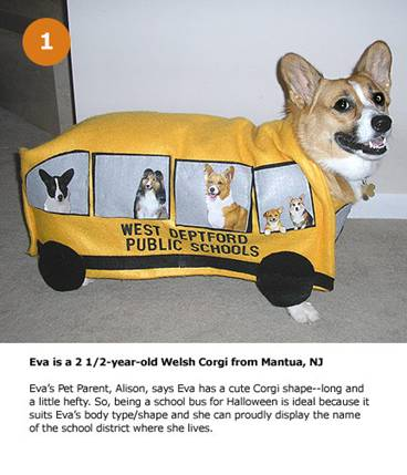 Funny Picture Clip: Funny pictures dogs halloween costumes ...