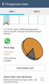 menonaktifkan whatsapp