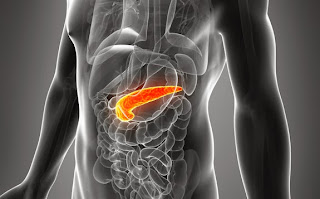 cancerul de pancreas