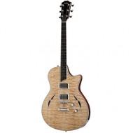 dan guitar taylor t3